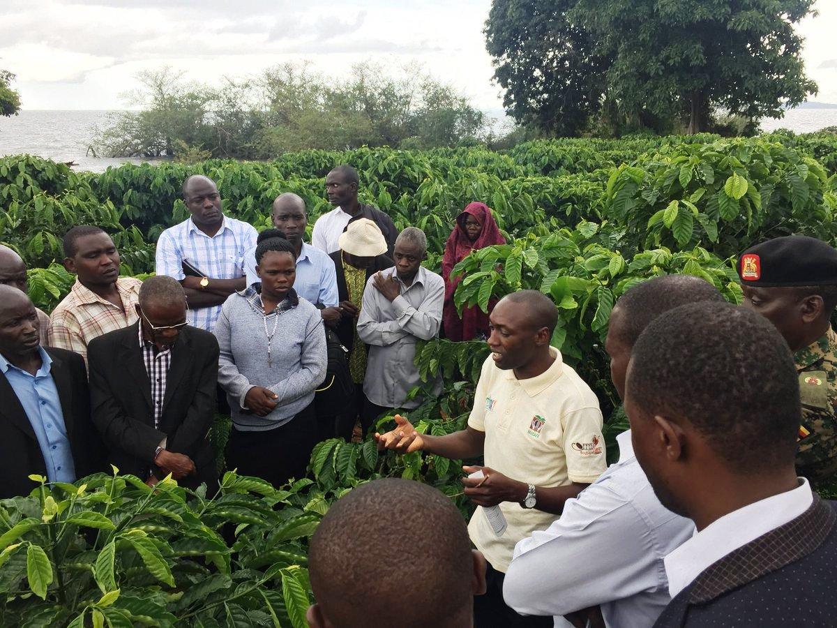 60 farmers from Isingiro district learn from Demo Farm in Bunjakko