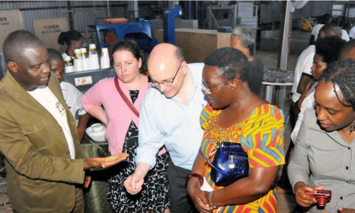 Nucafe to promote Uganda's coffee in US