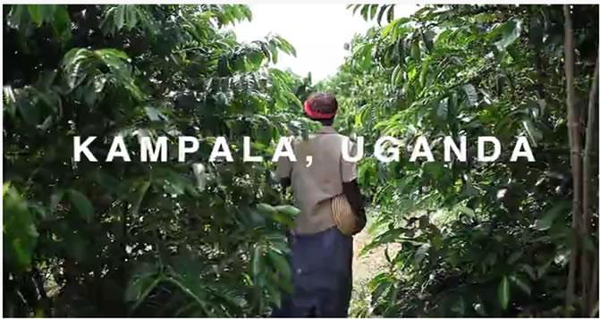 Ugandan Coffee Leads to International Internship Opportunities