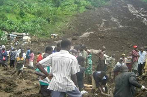 Landslides wipe out 2,000 acres of coffee in Bududa