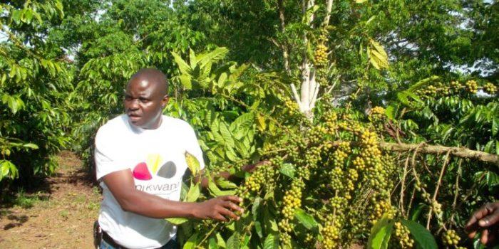 Joseph Nkandu: an innovative Farmer Ownership Model for Uganda's Growth